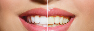 51031 dentist
